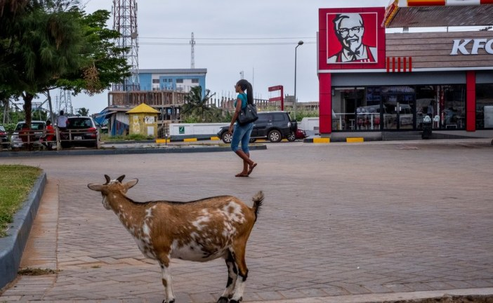 The Global Siren Call of Fast Food
