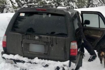 Man Trapped In Snow For 5 Days Says He Survived On Taco Sauce Packets