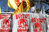 Wendy's and Its Tomatoes Come Under Fire From Farm Workers' Campaign