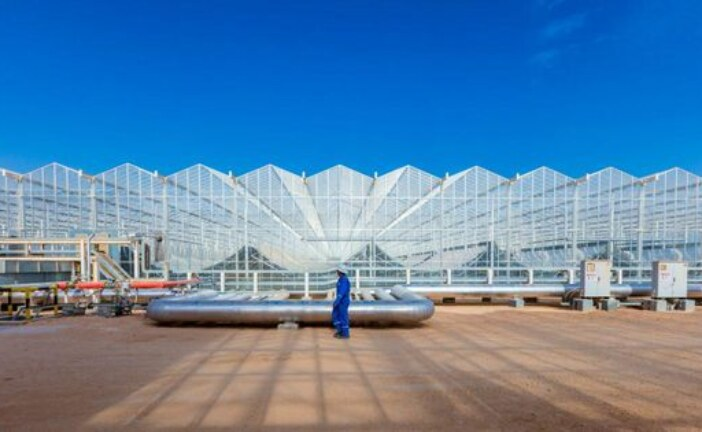 The Case of GlassPoint Solar
