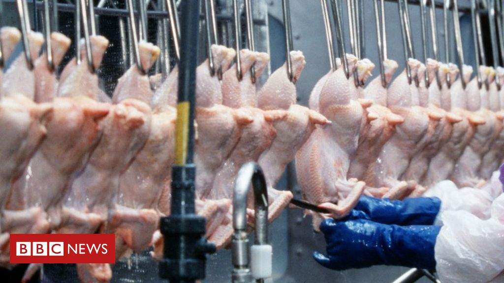 Chlorinated chicken: How safe is it?