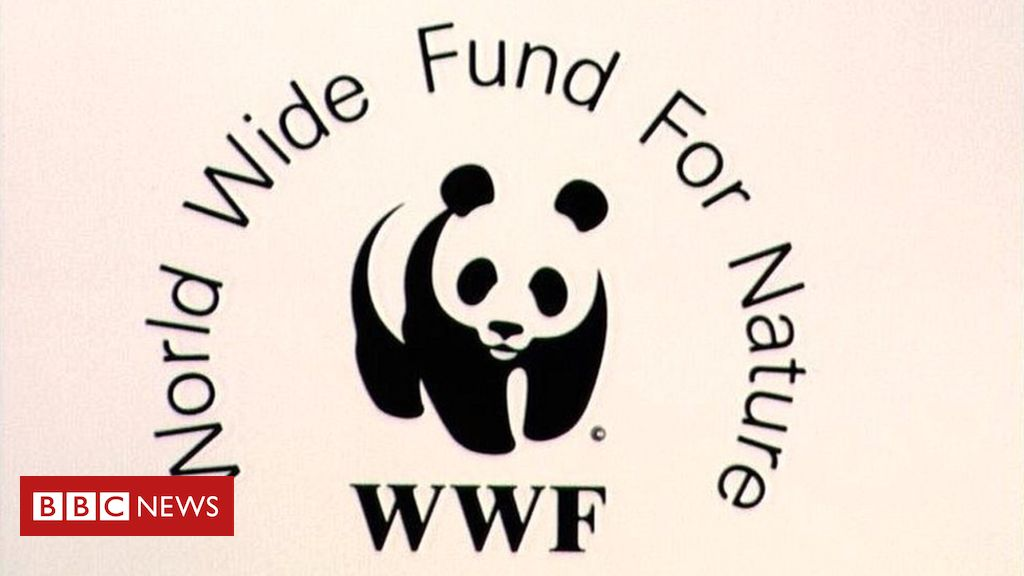 WWF accused of funding guards who torture and kill in poaching war